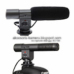 VIDEO MICROPHONE