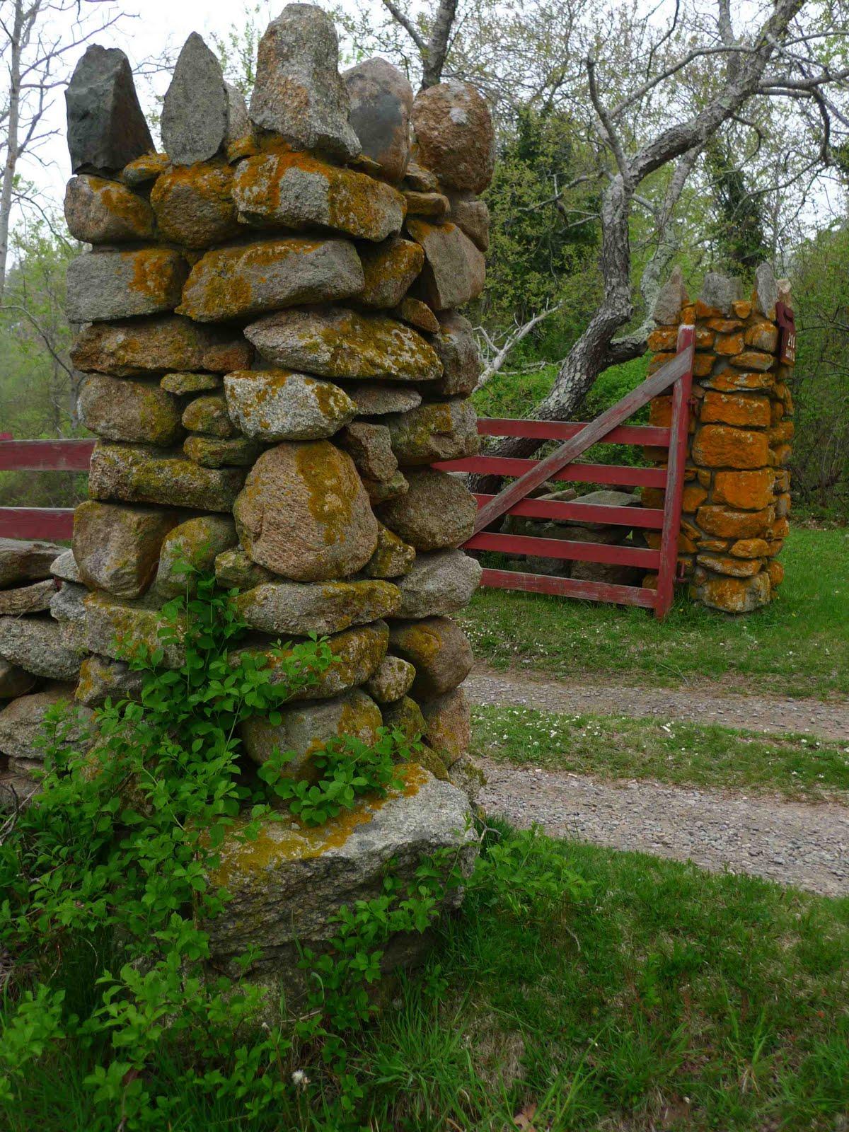 Rock wall drawing rock pillars the wall - The Chilmark Walls Martha S Vineyard Massachusetts