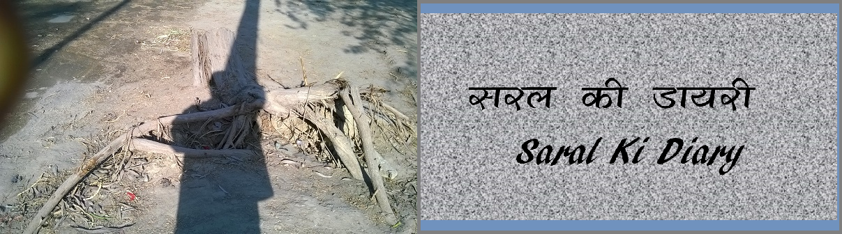 सरल की डायरी Saral ki Diary