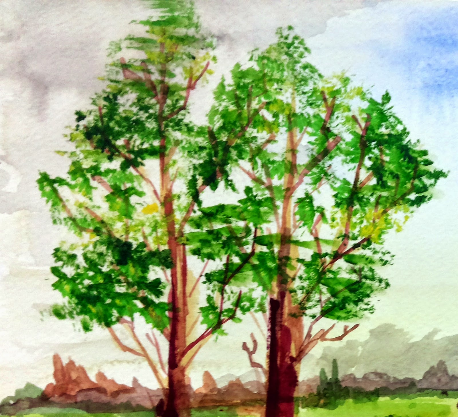 trees two landscape