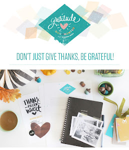 Gratitude Documented w/ Shanna Noel