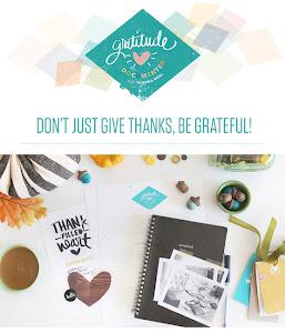 Gratitude Documented w/ Shanna Noel