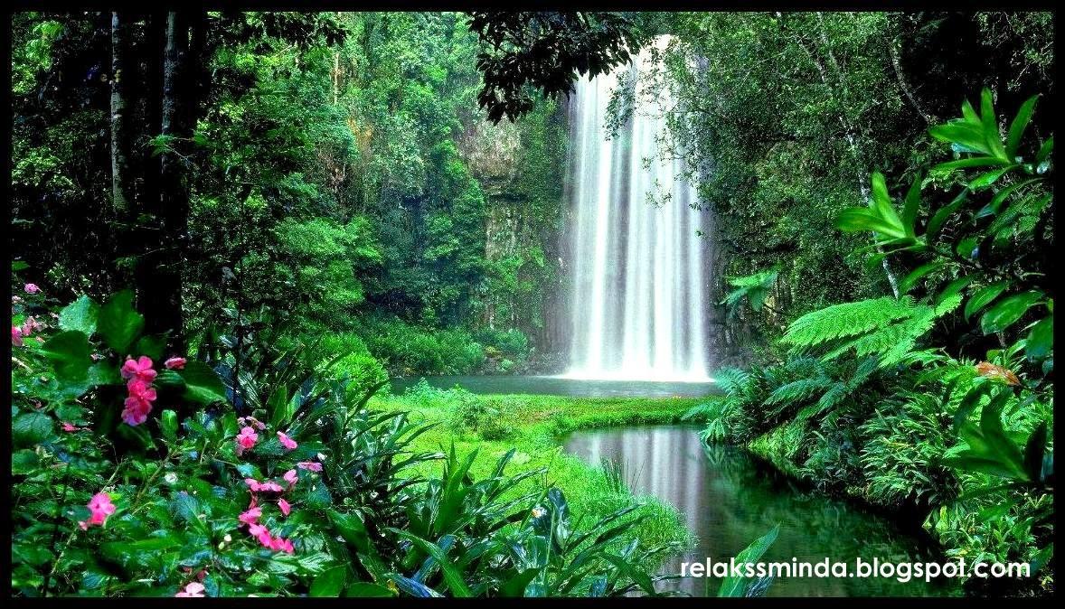 Menjaga Dan Memelihara Alam Sekitar