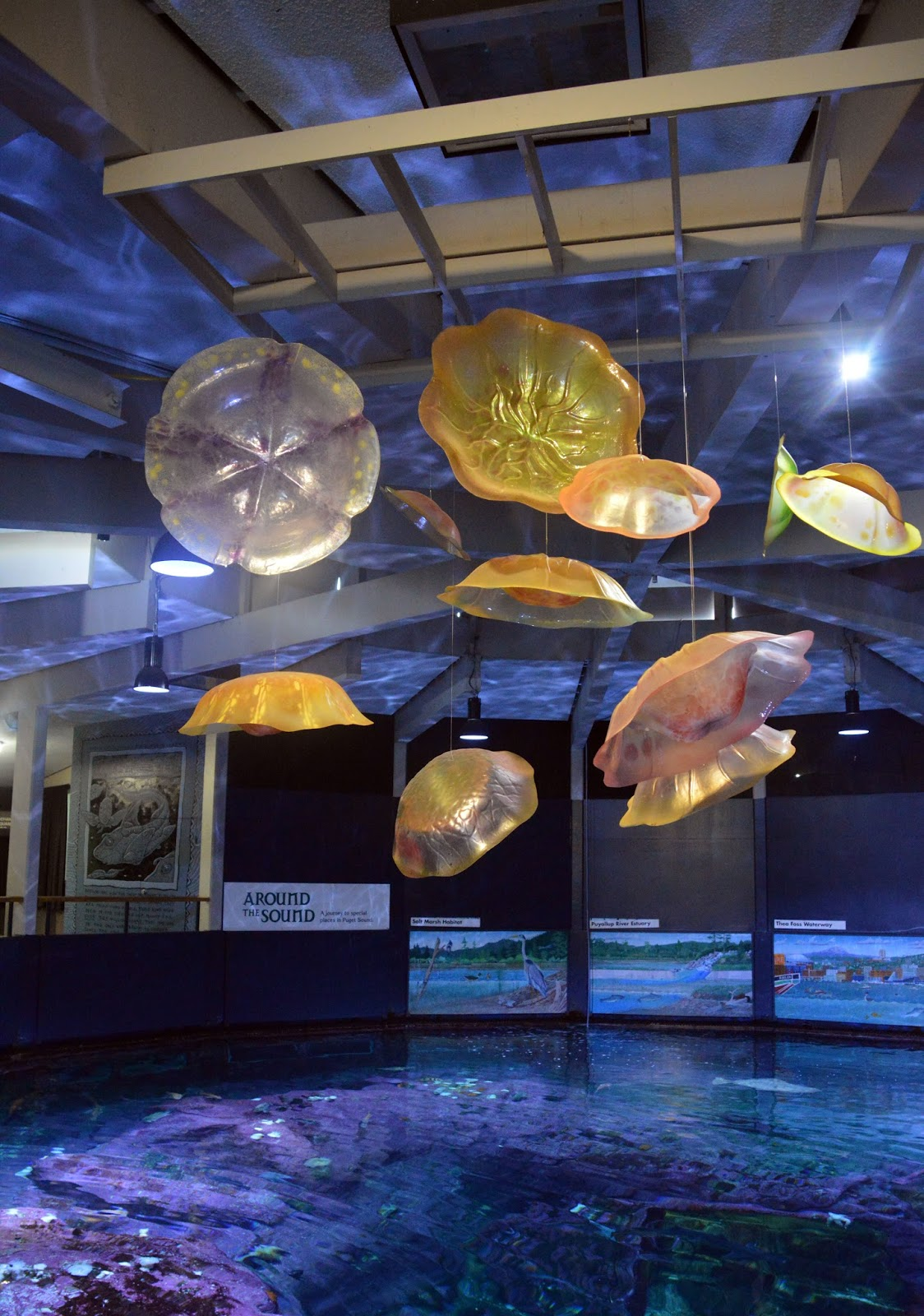 Point Defiance Zoo And Aquarium Fall 2015