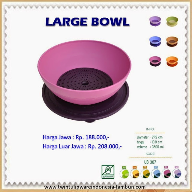 large bowl tulipware 2013