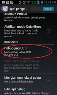 Cara Aktifkan USB Debugging pada Andromax C3