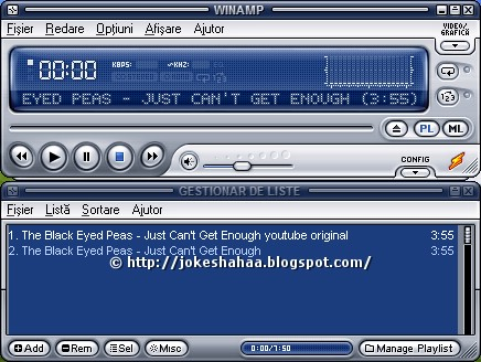 Winamp_audio_video_player_playlist