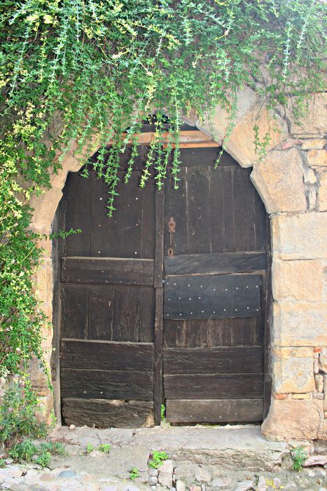 arch with wooden door and green climbing plant