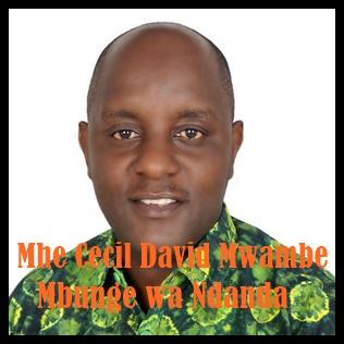 Mbunge wa Ndanda