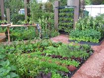 Köksträdgårdar – här för att stanna