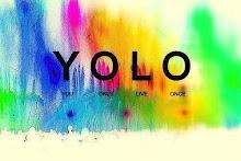YOLO significa: