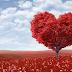 10 dicas para se evitar um infarto