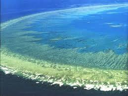 Большой Барьерный Риф, фото, посетить, путешествие, цены, отзывы, купить билет на самолет
