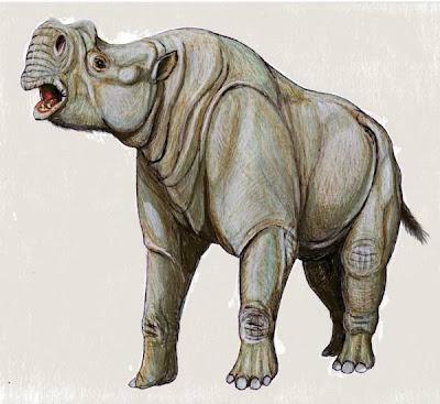 Brontotheridae Rhinotitan