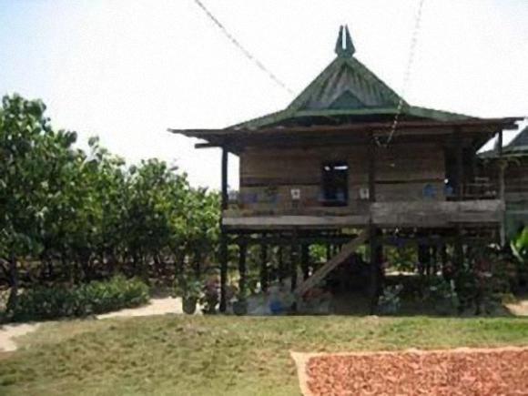 Download this Rumah Adat Kalimantan Timur Sulawesi Bugis picture