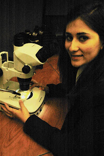 Intern Emily Jaso checks for counterfeit bills under a microscope.
