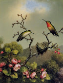 Vintage Hummingbirds, 1800's