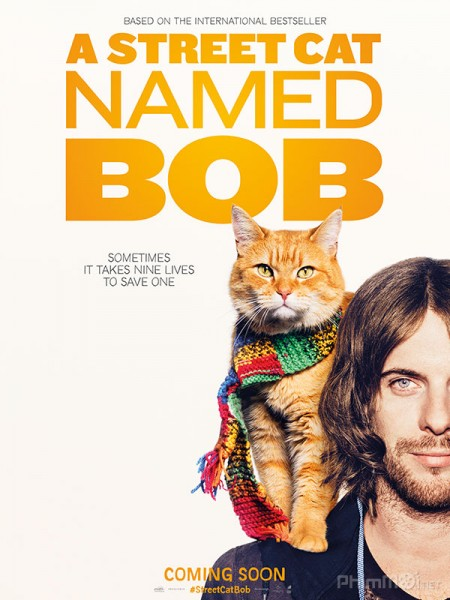 Chú Mèo Đường Phố Tên Bob - A Street Cat Named Bob