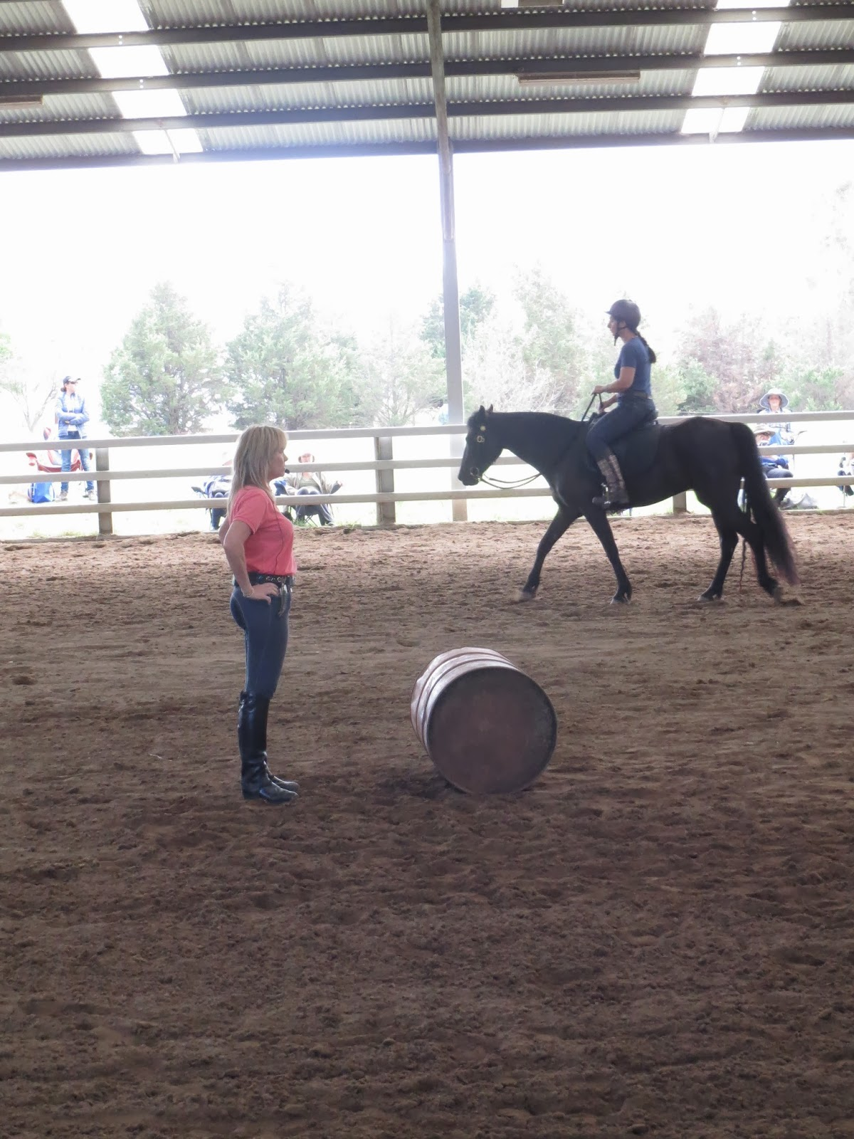 Linda Parelli Rider Makeover Clinic - Vicki