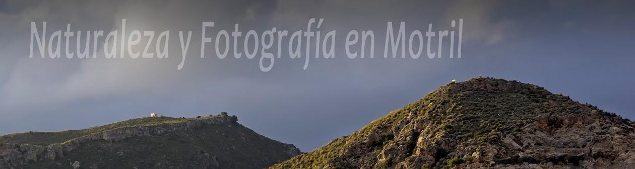 Naturaleza y Fotografía en Motril