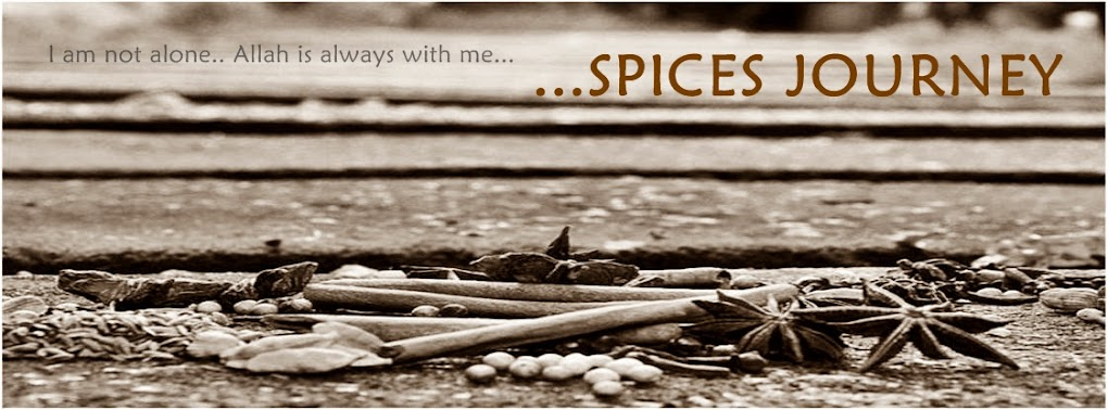 Spices Journey