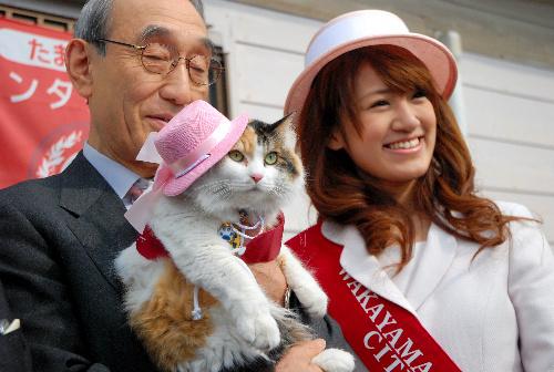 Nitama, el nuevo jefe de estación de Kishi
