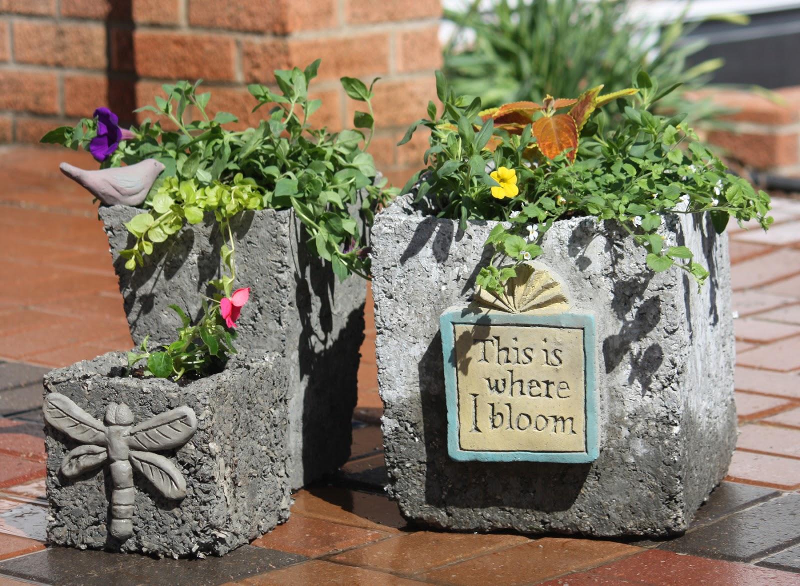 from the summer's garden: need graduation gift ideas? go creative