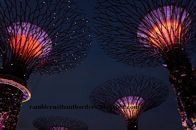 Light Up of Supertrees at night, Gardens By the Bay, Singapore