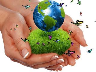 mariposas y naturaleza para nuestro mundo