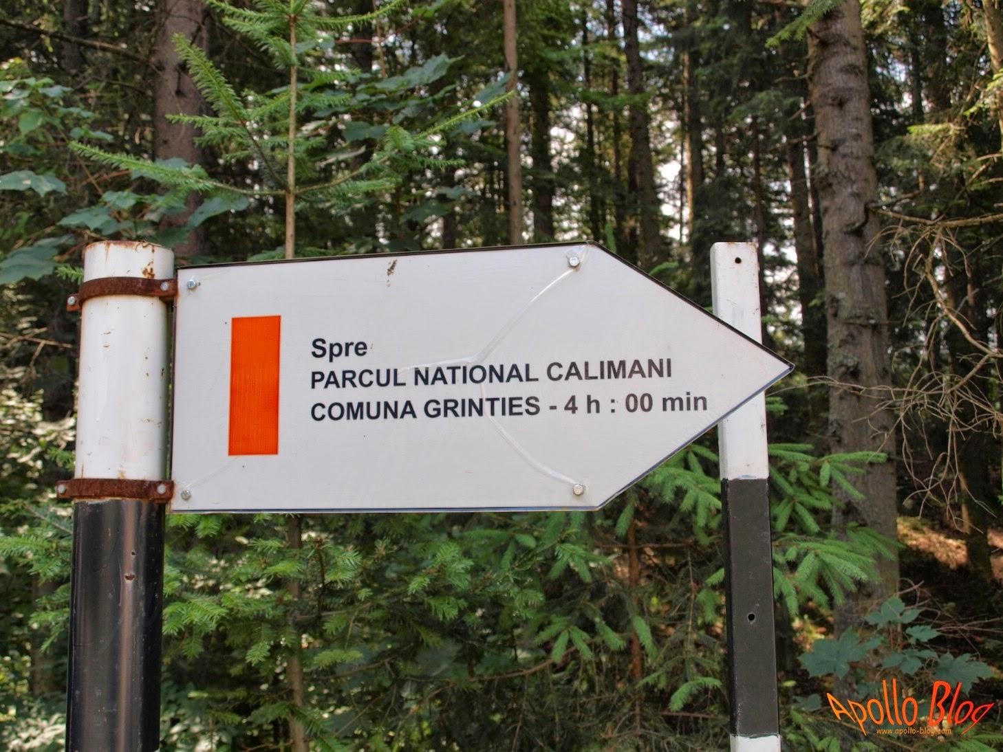 Calimani