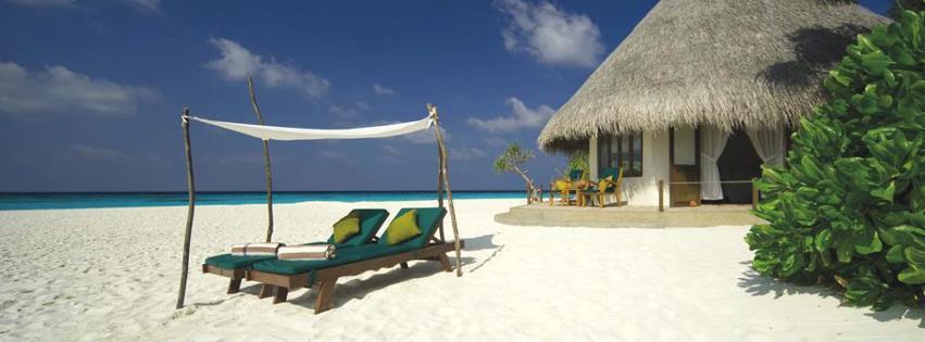 Kumsal ve bungalov kapak resimleri