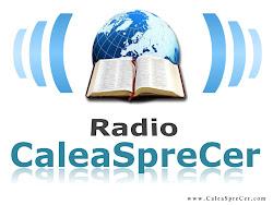 Radio crestin, articole,marturii,adauga articole AICI: