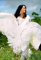 Cute, Bhavana, In, White