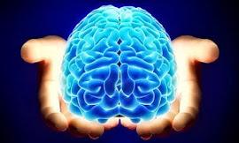CIF e Desempenho Neuropsicomotor