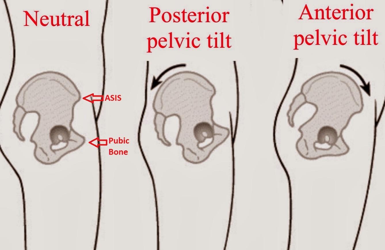 Pelvic Pain Diary Healing The Pelvic Floor 3 Easy Pelvic Floor