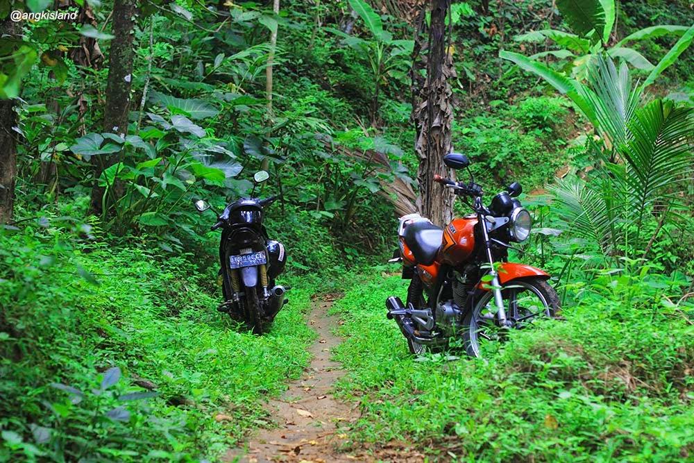 parkir motor di hutan