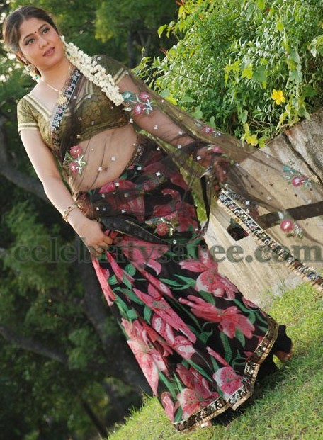 Floral Tissue Transparent Saree