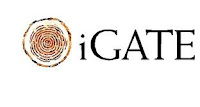 Igate Global Solutions Limited company image