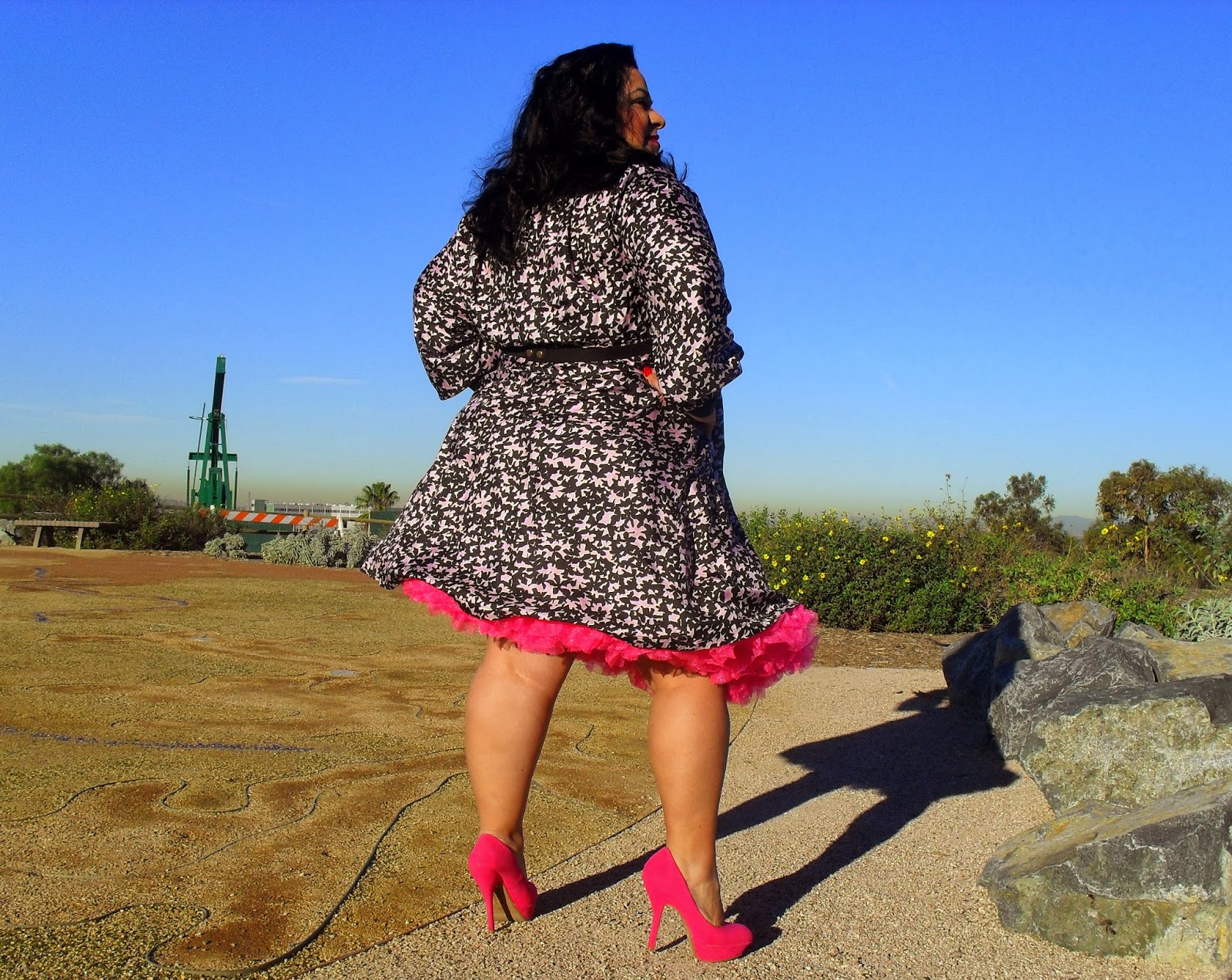 Hot Pink Petty Coat and Cabiria\'s Stefania Dress (Outfit of the Day ...