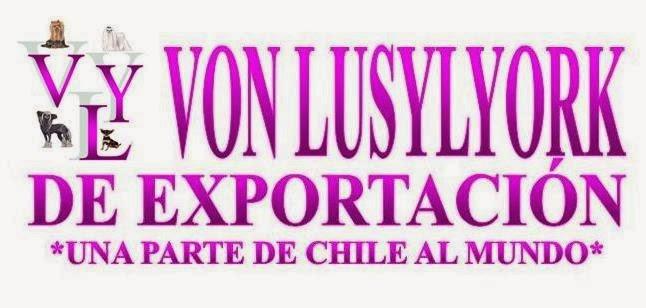 ♥ VON LUSYLYORK DE EXPORTACIÓN ♥