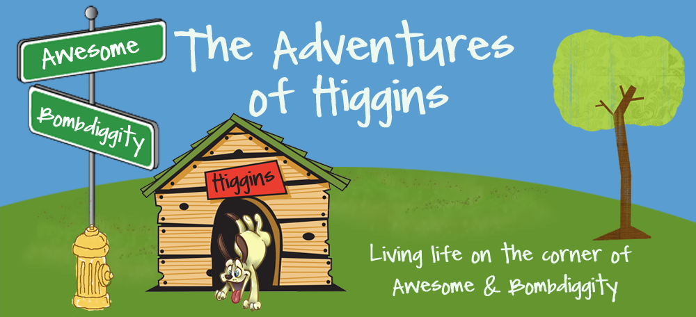 The Adventures Of Higgins