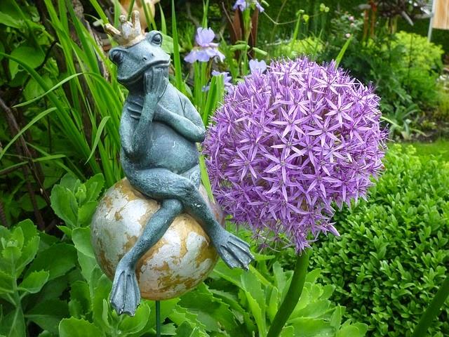 Bahçede başında taç olan bir kurbağa
