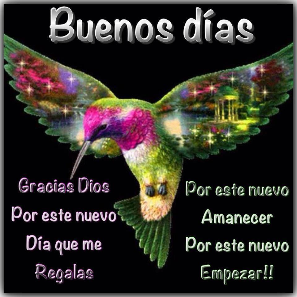 Buenos días Gracias Dios
