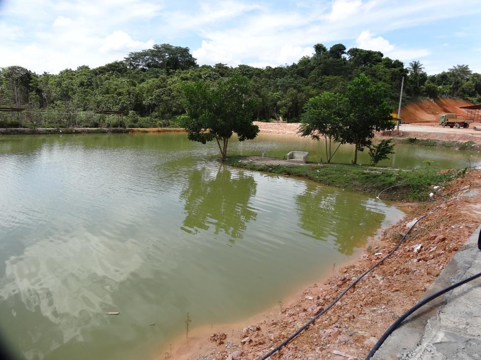 Fishing spots in kuala lumpur selangor hentian angsa for Freshwater pond fish