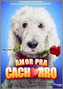 Amor Pra Cachorro Torrent Dual Audio