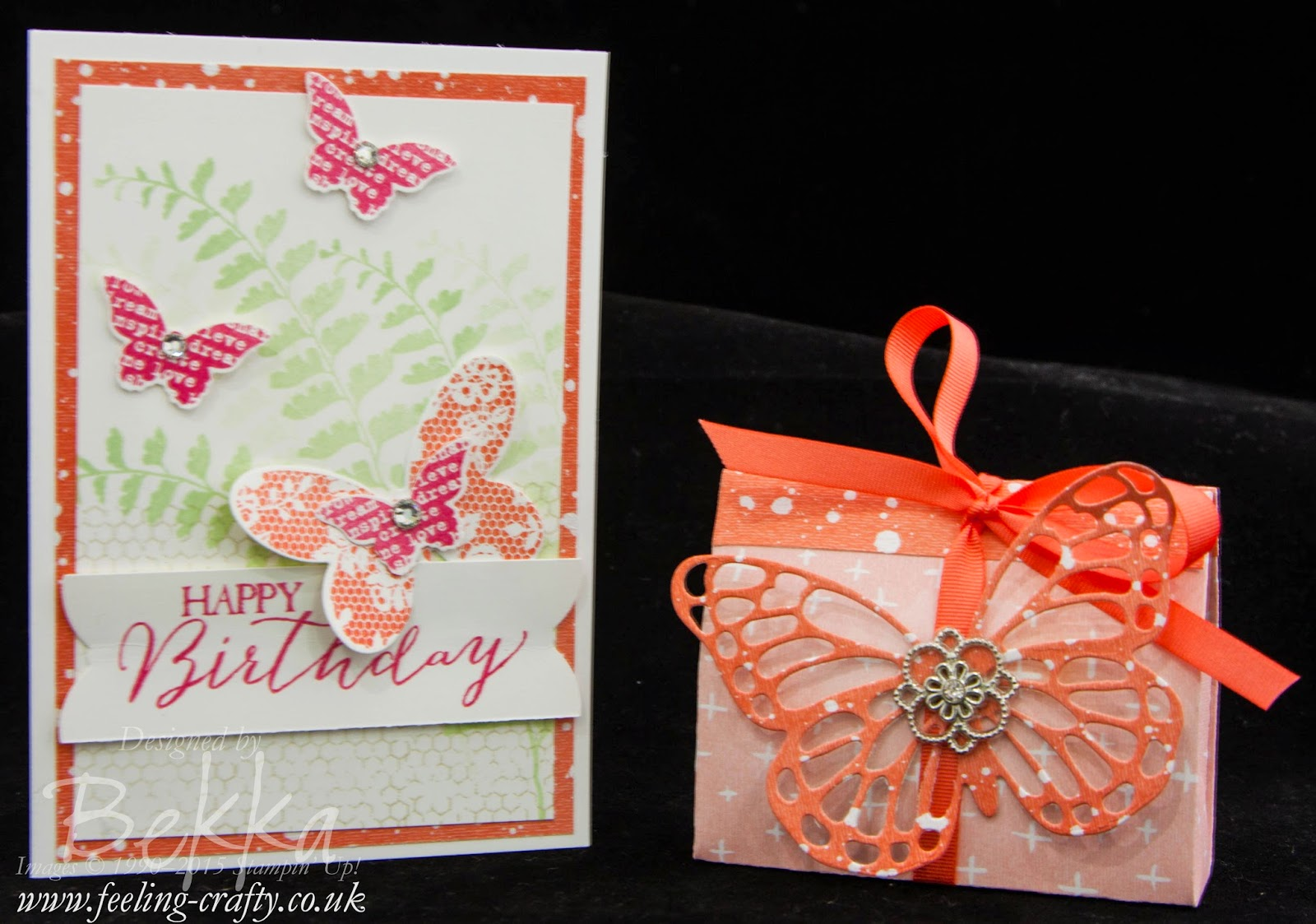 Butterfly Basics Birthday Card and Gift Bag - check out this blog for lots of great ideas