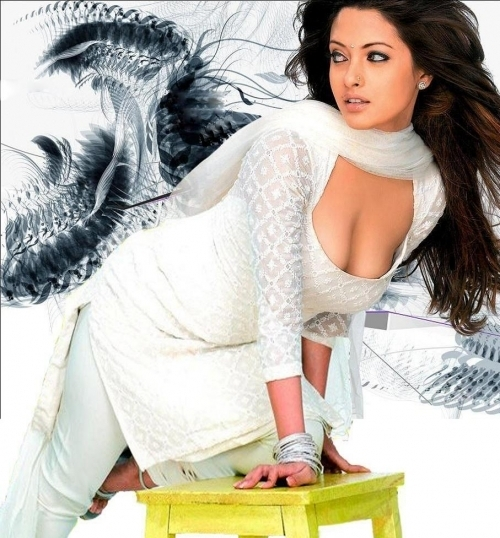 riya sen sexy boob cleavage photo 06