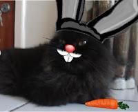 Gata Dorys fantasiada de coelho da páscoa