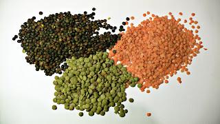 soczewica aminokwasy białka roślinne