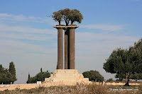 The Olive Columns and olive trees at the Ramat Rachel park of olives